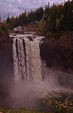 This vertical image is the rushing Snoqualmie Falls located in King County Washington state.  A yellow blooming Scotch broom plant is in the foreground.  This is a popular travel scenic nestled in the Cascade mountains. Stock Photo - 11221105