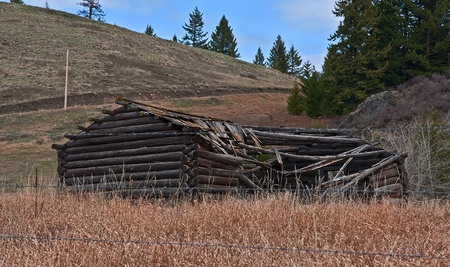 molson: This photo is an old turn of the century log cabin homestead located near Molson, WA on Fletcher Hill that is debilitated with the roof in process of caving in due to aging.  Nestled in the mountains of Okanogan County in north central Washington state. Stock Photo