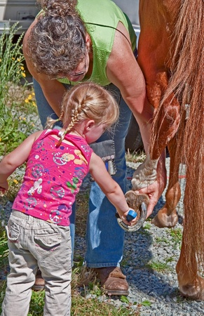 This grandmother is helping her toddler granddaughter with blond braided pigtails to help clean a horse photo