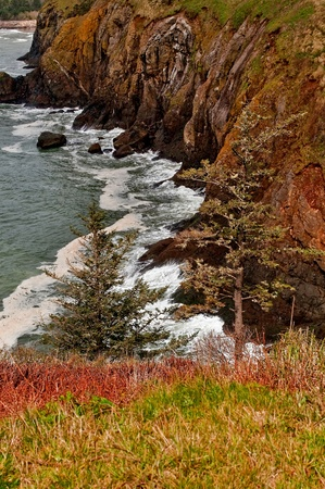 This beautiful seascape is the Pacific Ocean on steep cliffs in Washington State near Cape Disappointment.  Waves are hitting the rocks at the bottom of the cliffs in this vertical stock image of majestic beauty. Stock Photo - 11930798