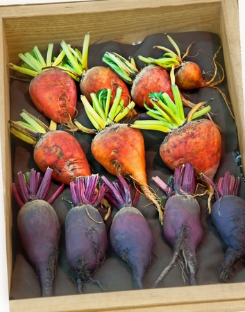 This is several rows of orange and purple beet, root vegetables lined with dark fabric in a wood box. Banco de Imagens