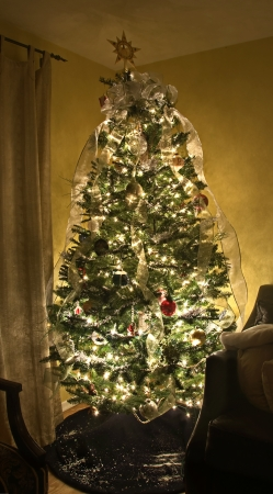 This beautiful home Christmas tree is decorative with sheer ribbon curled from top to bottom with other ornaments to decorate this holiday photo Stock Photo - 14063963