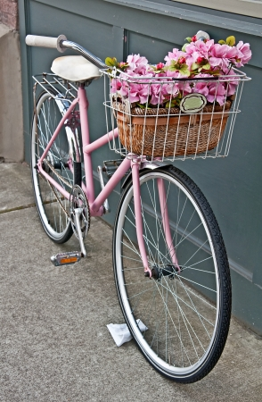 This vintage pink girls bicycle has beautiful pink flowers in a basket on the front of the bike   Set in a vertical format on a sidewalk  photo