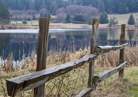 evergreen trees: This nature landscape is a wet, wood split rail fence near a small lake with evergreen trees in the background   Taken on Orcas Island, Washington
