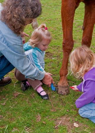 This adult is helping two blond two year old toddler girls to learn how to care for the foot of a horse, in this vertical, stock image of rural life  photo