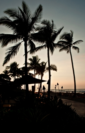 This is a tropical island silhouette beach scene, with palm trees in the horizon, a path in the forground and the sunset in progress   Beckoning a vacation  photo
