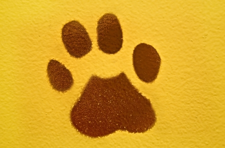 This is a painted brown animal paw print on a yellow colored wall in a horizontal format  Banco de Imagens
