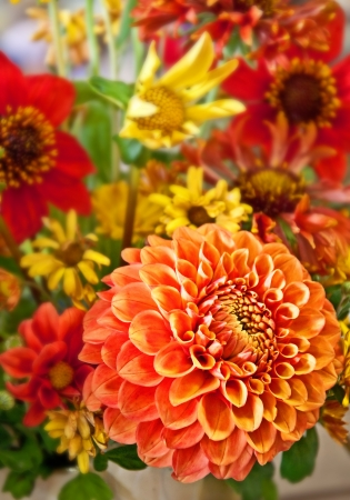 yellows: This cut flower bouquet, is warm colors of oranges, peaches and yellows, centering on a dahlia   Vertical orientation  Stock Photo