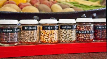 bocaux en verre: Cette nature morte est une rang�e de petits pots de verre de graines de jardin divers, comme le ma�s, les haricots secs et il ya divers l�gumes dans le fond