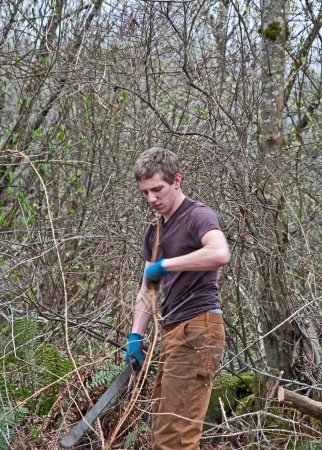 underbrush: This young Caucasian man is clearning thick brush and underbrush of a densely forested growth area, using a machete knife