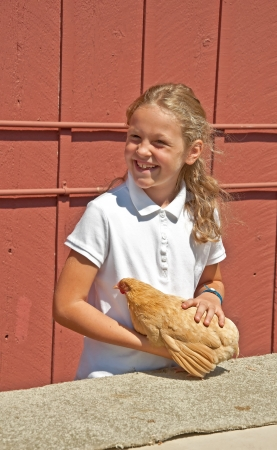 skagit: MT VERNON, WA - AUGUST 13:  Unidentified girl age 7, in 4H is having her chicken judged at Skagit County Fair. The event was held August 13, 2009 in Mt Vernon, WA.