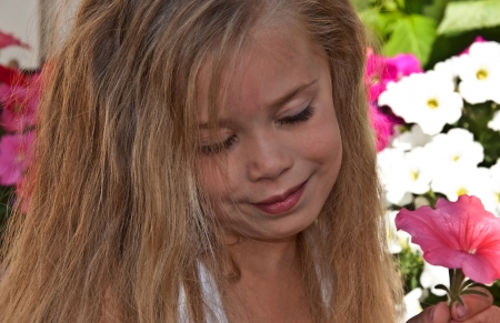 bi racial: The cute 4 year old bi racial girl is smelling a pink petunia flower   She is outdoors and has long blond hair and very cute