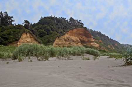 This landscape is Copalis Beach in Washington in Grays Harbor County   The cliffs has many colorful layers of warm colors against the light sand   Dune grass blows in the foreground