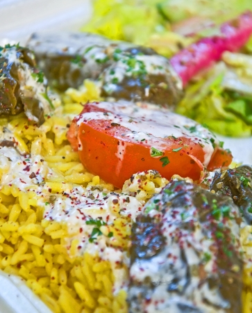 This is a Mediterranean food dish of stuffed grape leaves with a white spicy sauce over it   Yellow spiced rice and onions are on the side with a tomato cut in half    photo
