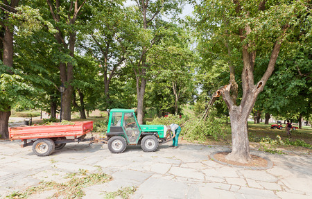 fastens: BRATISLAVA, SLOVAKIA - AUGUST 16, 2015: Worker fastens rope to a small tractor in order to remove broken by hurricane tree branch in Bratislava castle park, Slovakia