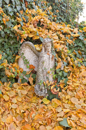 placidity: KUTNA HORA, CZECH REPUBLIC - NOVEMBER 04, 2015: Statue of an angel covered in green ivy and yellow leaves near the Cemetery Church of All Saints (UNESCO site). Church hosts famous Sedlec Ossuary