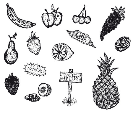 Illustration of a doodle hand drawn food set with various fruits including banana, apple, pineapple Vector