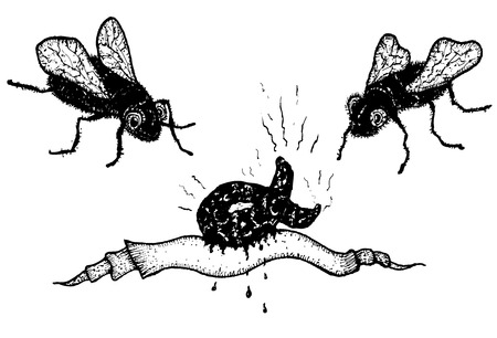 shit: Illustration of hand drawn flies flying around a piece of shit Illustration