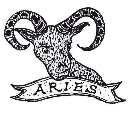 oveja negra: Ilustraci�n de una mano dibujada signo del hor�scopo del aries con la bandera