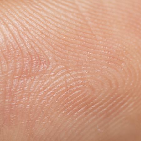 Es la textura de la piel para el patrón y el fondo.