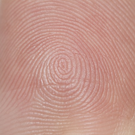 It is Hand Skin texture for pattern and background.