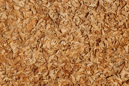 carpenter's sawdust: It is Saw dust texture for pattern and background.
