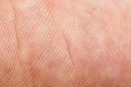 chiromancy: It is Skin texture for pattern. Stock Photo