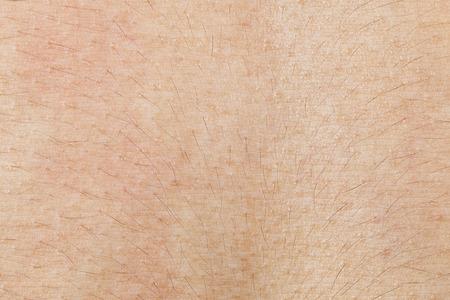 Es textura de la piel con el pelo para el patrón.