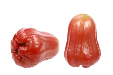 rubicund: It is Two rose apples isolated on white.