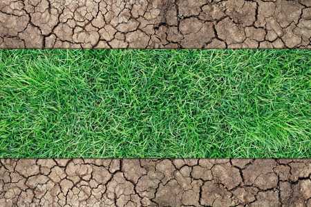 lacking: It is Dry soil and green grass. Stock Photo