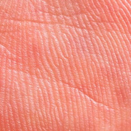 chiromancy: It is Hand skin texture.