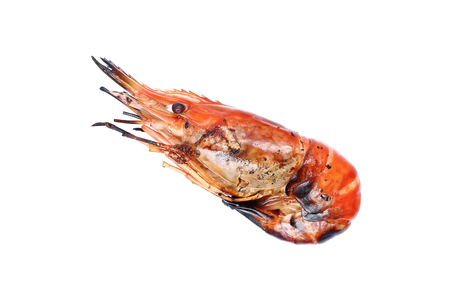 burned out: it is one grilled giant freshwater prawn isolated on white. Stock Photo