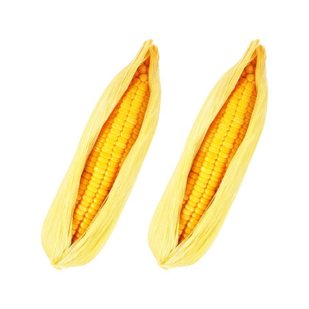 it is steamed corn with peel isolated on white.