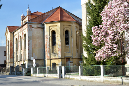 desolate: Bytca, Slovakia - April 13, 2016: Desolate jewish synagogue in sunshine in spring. Back view from the street. Editorial