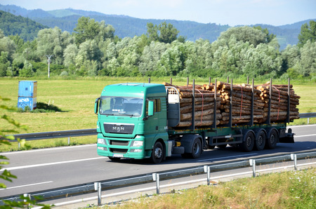 d1: Dolny Hricov, Slovakia - June 29, 2016: Green MAN truck fully laden by wood drives on slovak D1 highway surrounded by rural landscape.