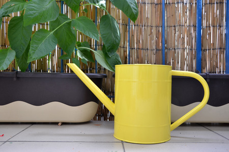 flower boxes: Yellow metal watering can on the balcony next to pepper plants in flower boxes