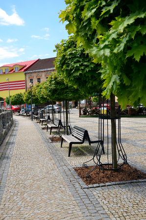 Nice town square with many green trees during hot summer day