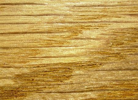 oak texture Stock Photo
