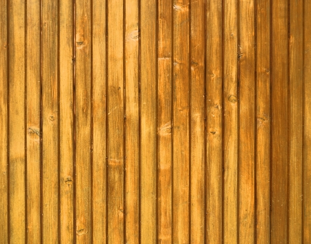 wooden plate texture photo