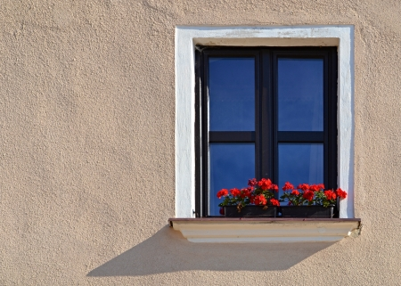 background beautiful old window with red florets Stock Photo