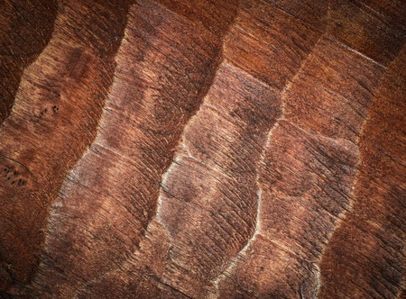 gouged: abstract background or texture  carved board wood Stock Photo