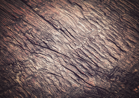 gnarled: abstract background or texture brown old gnarled wooden board