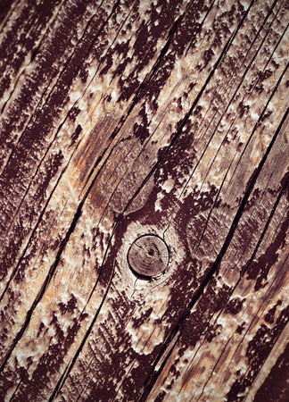 coatings: abstract background or texture old ragged wood coatings