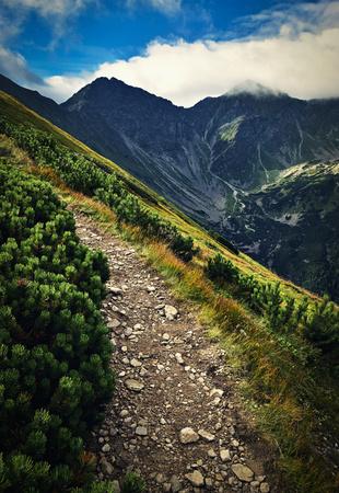 rocky peak: Mountain stone walkway to the rocky peak