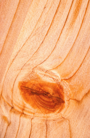 background or texture detail of a wooden board with a bump Stock Photo