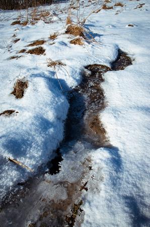 landscape background Winter detail frozen swamps