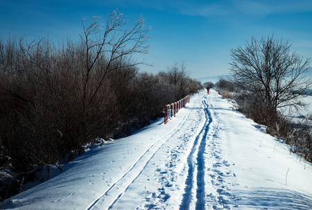 winter background in the distance a figure skier on a cross-country ski run Stock Photo
