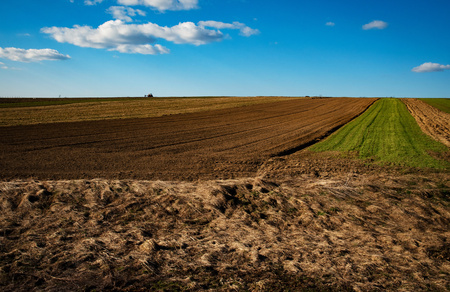 landscape seasonal background Fields sowing in spring