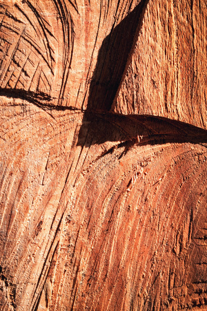 background or texture abstract wood surface with shadow