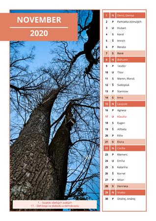 background Slovak calendar with names for November 2020